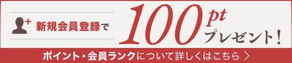 会員登録で100ポイントプレゼント。詳しく見る