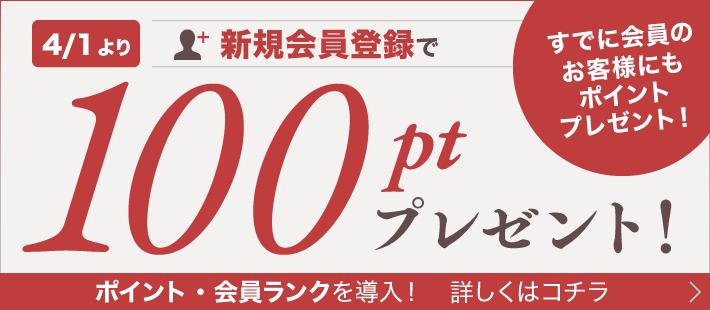 4/1より、新規会員登録で100ポイントプレゼント!詳しく見る