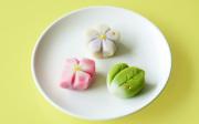 和菓子作り体験セット(秋)